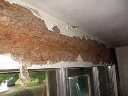 download-22-termites_orig